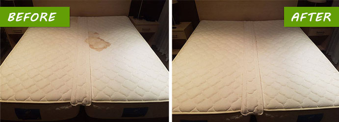 Mattress Stain Removal Services Bayswater