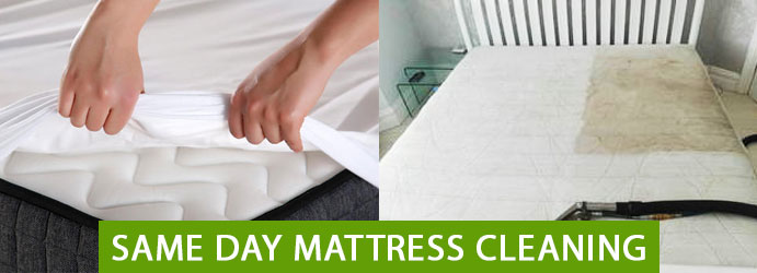 Same Day Mattress Cleaning Trigg