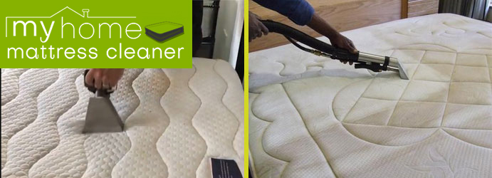 Mattress Mould Removal Claypans