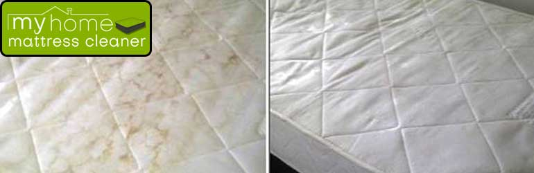 Expert Mattress Mould Removal Service